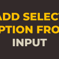 how to add option to select tag from input text using javascript